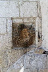 The indentation in the wall where Jesus placed His hand.