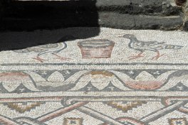 Mosaic floor in the ruins of the Byzantine church.
