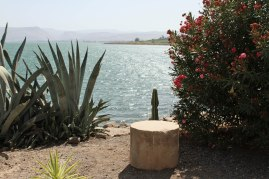Sea of Galilee at Capernaum.