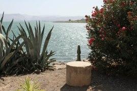Sea of Galilee at Capernaum.