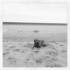 grendel beach
